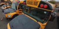 Transport minister announces task force on school bus seatbelts