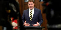 A $12 website and volunteer videos: How some Scheer supporters are fighting back